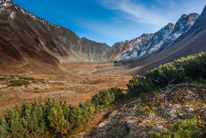 Вулканы Камчатки стоковое изображение