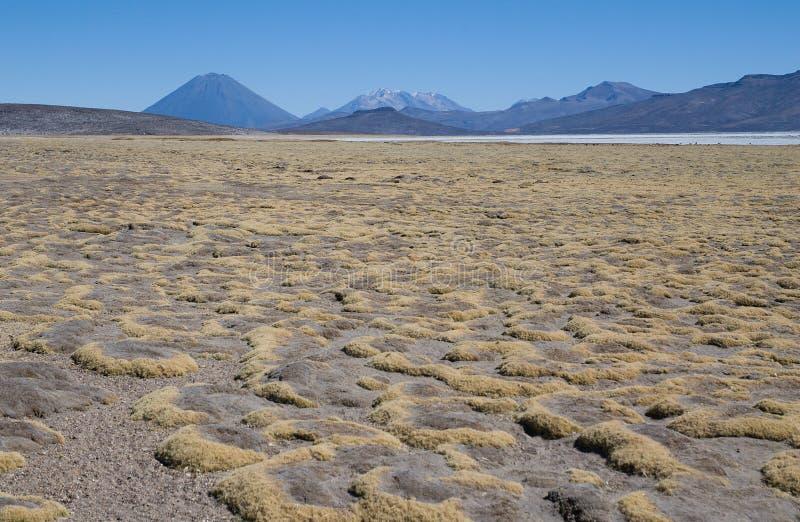 Вулкан El Misti и вулкан Nevado Chachani стоковые изображения rf
