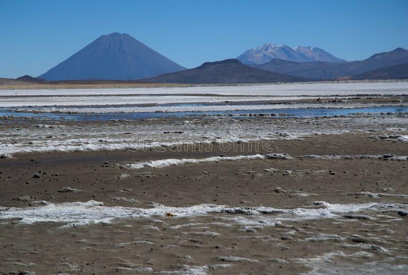 Вулкан El Misti стоковые фото