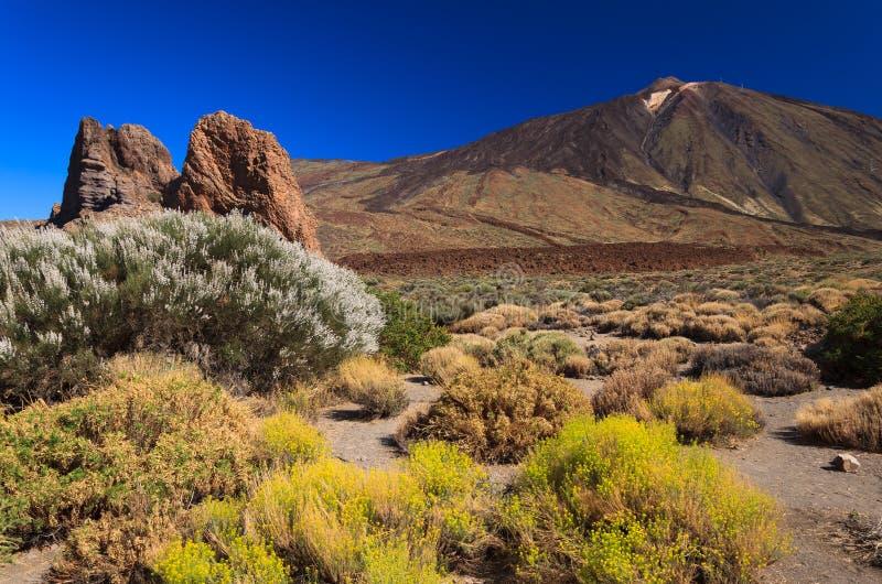 Вулкан Pico del Teide, Tenerife стоковые фотографии rf
