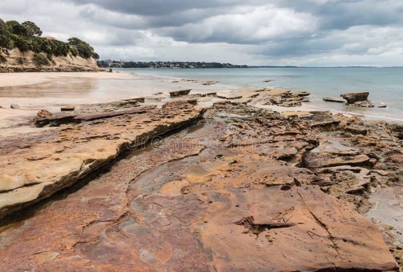 Вулканические плиты на пляже Takapuna стоковые изображения