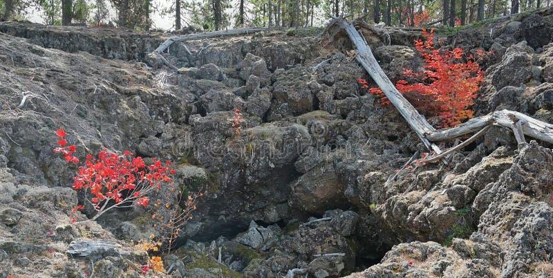 Вулканический цвет лавового потока & падения стоковые фотографии rf
