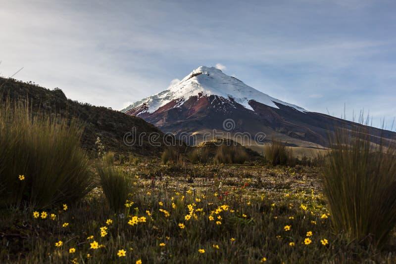 Вулкан Котопакси стоковое изображение rf