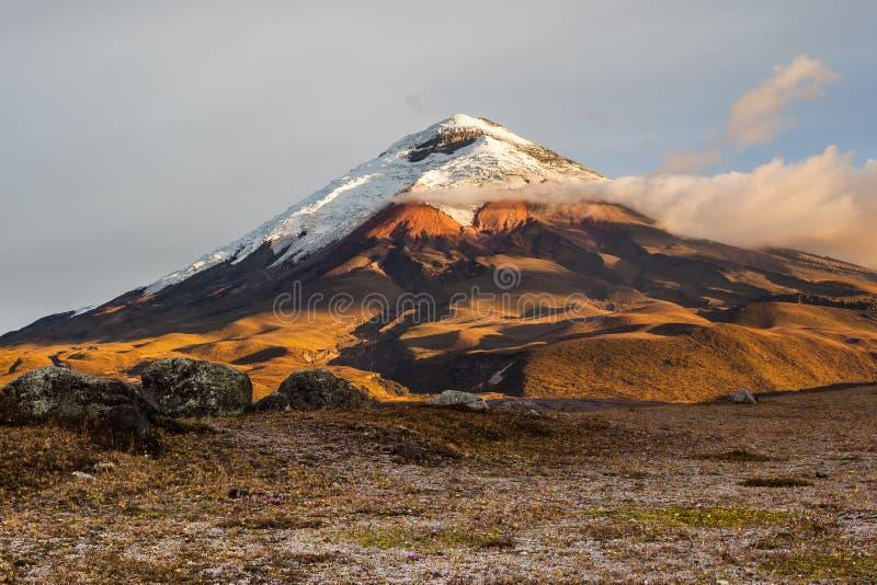 Вулкан Котопакси стоковые фотографии rf