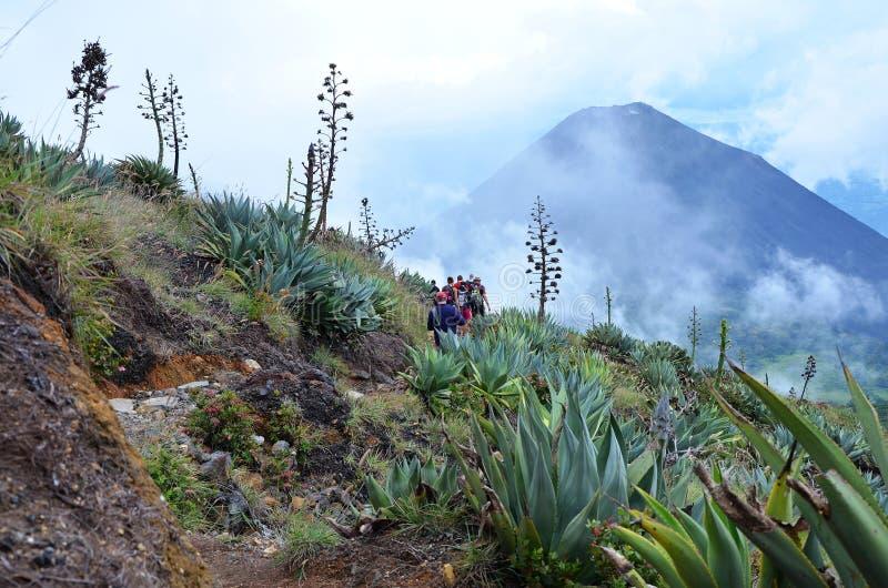 Вулкан Санта-Ана стоковые изображения