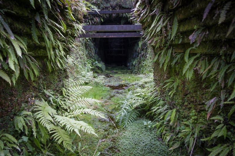 Вход шахты Brunner стоковые фотографии rf