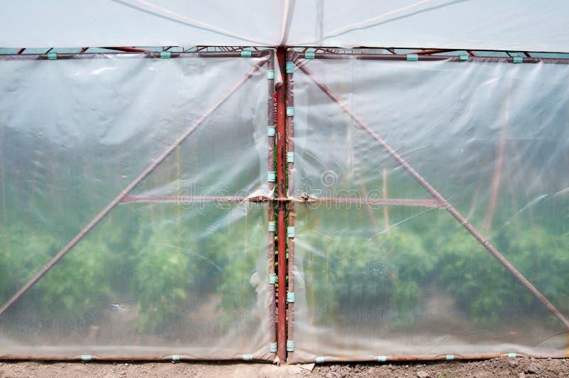 Вход зеленого дома стоковое изображение