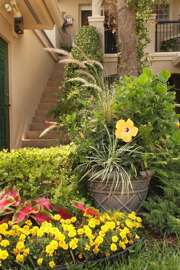 Вход к дому с желтыми цветками стоковые фотографии rf