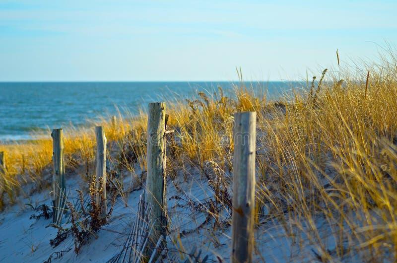 Вход пляжа Branegat стоковое изображение rf