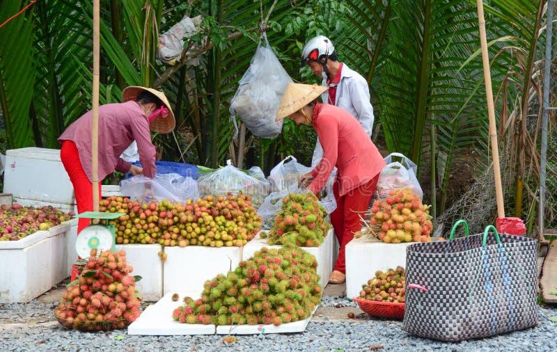 Въетнамские женщины продавая много тропических плодоовощей стоковое изображение