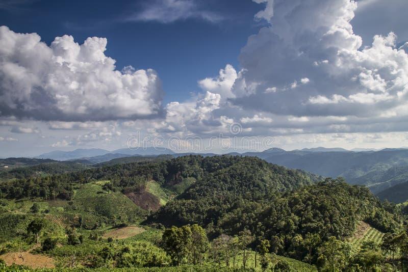 Въетнамские центральные гористые местности стоковое изображение rf