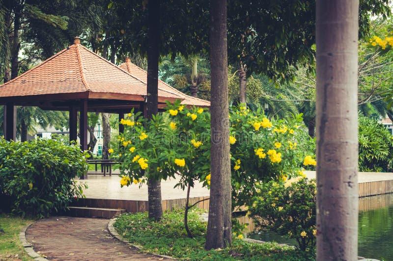 Въетнамский азиатский парк с типичными вегетацией и перголами стоковые фотографии rf