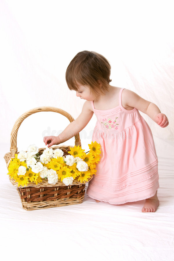 выбирать лепестков девушки цветка стоковые изображения