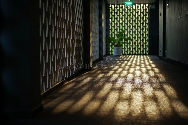 Выборочный фокус на поле цемента коридора отражает свет захода солнца стоковая фотография