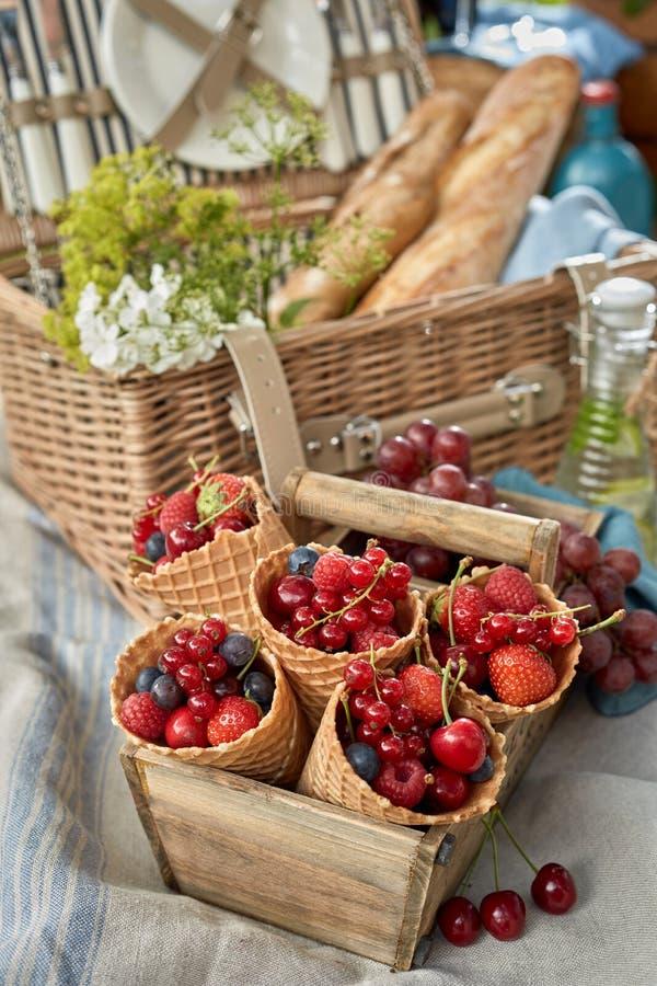 Выбор свежих ягод показанных в корнетах стоковое изображение rf
