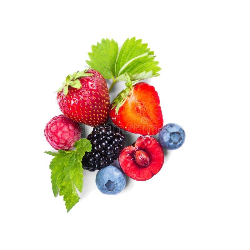 Выбор свежих ягод стоковое фото rf