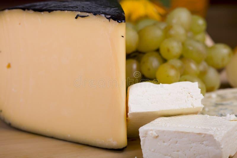 выбор сыра стоковое фото rf