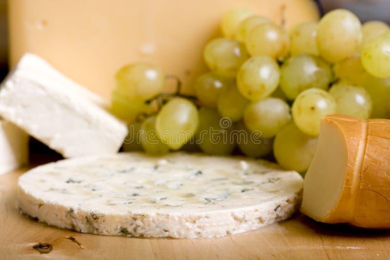 выбор сыра стоковая фотография rf
