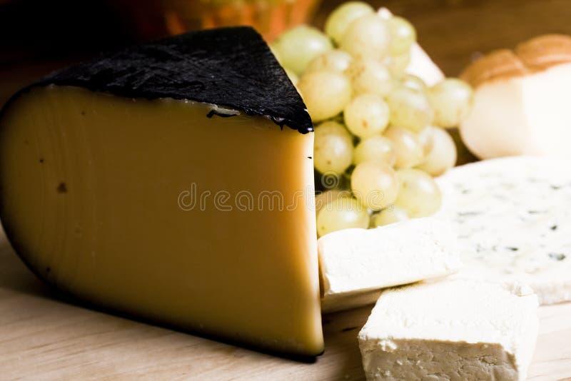 выбор сыра стоковое изображение