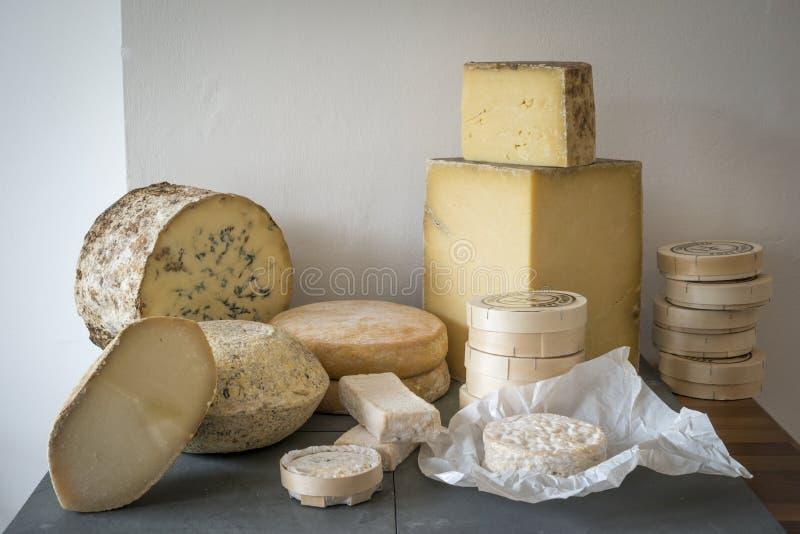 Выбор сыра стоковое изображение rf
