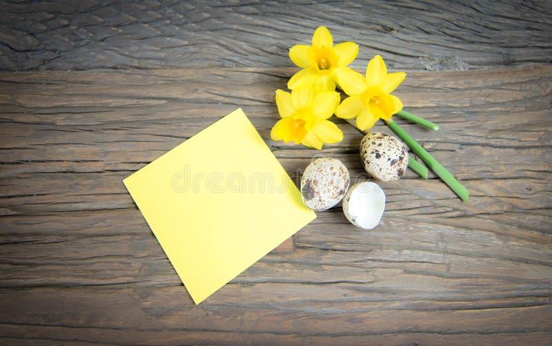 Вывесите его примечание с желтыми daffodils и яичками триперсток стоковые изображения rf