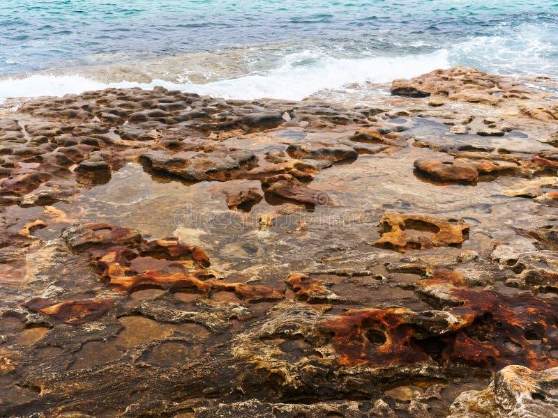 Выветренные утесы песчаника, пляж Bondi, Сидней, Австралия стоковая фотография