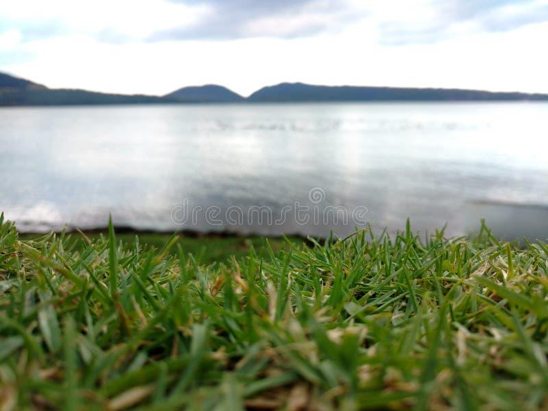 Выгон и озеро стоковые изображения rf
