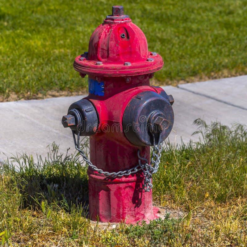 Выдержанный красный жидкостный огнетушитель на травянистой земле стоковые фотографии rf