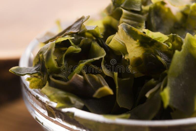 Выдержанный seaweed wakame стоковая фотография