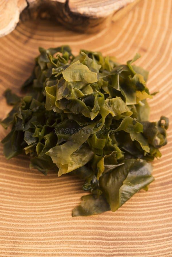 Выдержанный seaweed wakame стоковое изображение rf