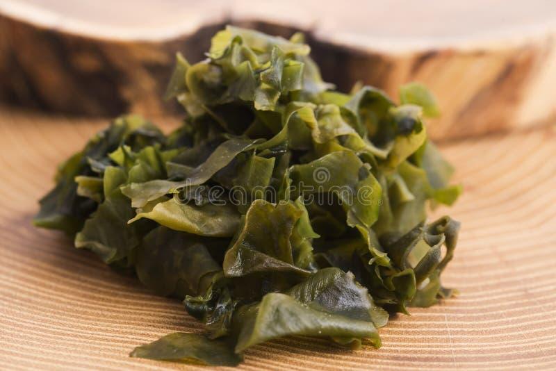 Выдержанный seaweed wakame стоковая фотография rf