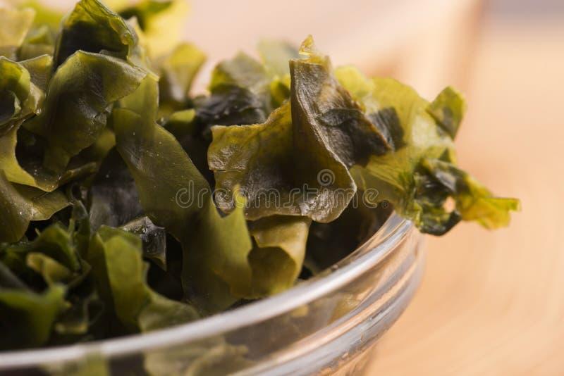 Выдержанный seaweed wakame стоковые изображения rf
