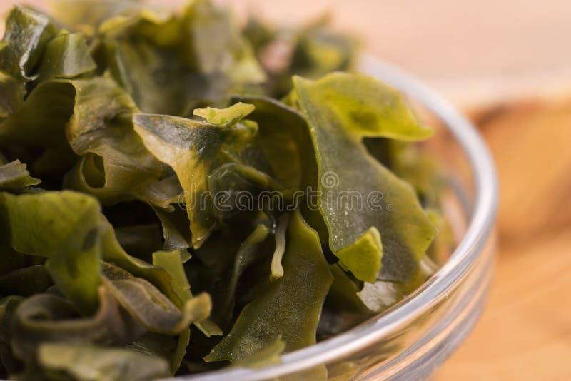 Выдержанный seaweed wakame стоковое фото