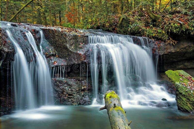 Выдержка времени небольшого водопада в немецком лесе стоковое изображение rf