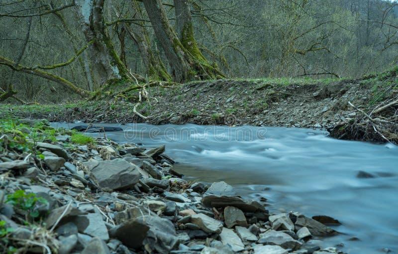 Выдержка времени реки Orke в немецком Rothaargebirge стоковое фото rf