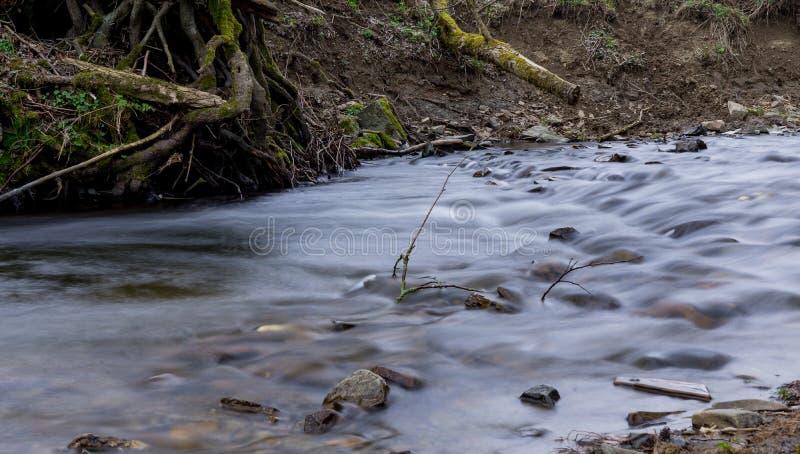 Выдержка времени реки Orke в немецком Rothaargebirge стоковые фотографии rf