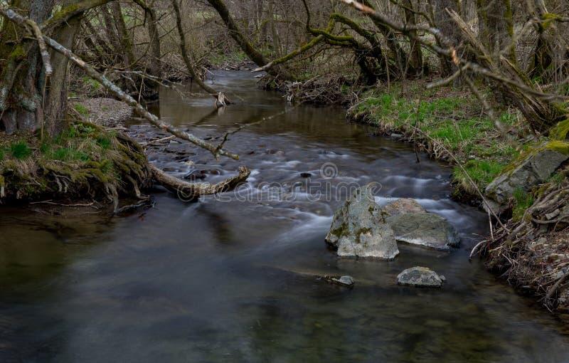 Выдержка времени реки Orke в немецком Rothaargebirge стоковая фотография rf