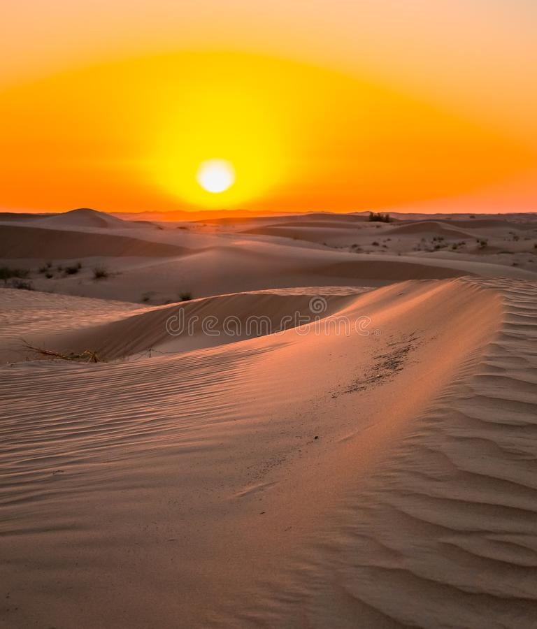 Выдержка захода солнца пустыни около Дубай, Объединенных эмиратов стоковые изображения