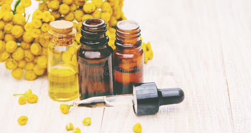 Выдержка пижмы целебная, тинктура, декокт, масло, в небольшой бутылке стоковое изображение rf