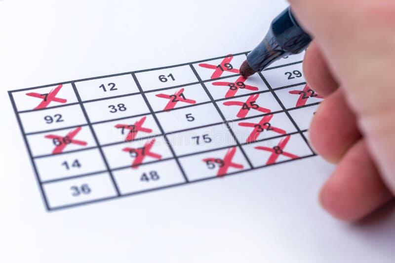 Выигрыш на bingo полностью тиканными номерами стоковые фото
