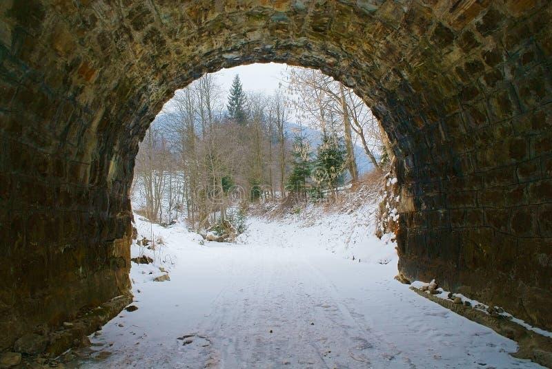 Выйдите от старого каменного тоннеля к лесу стоковые фотографии rf