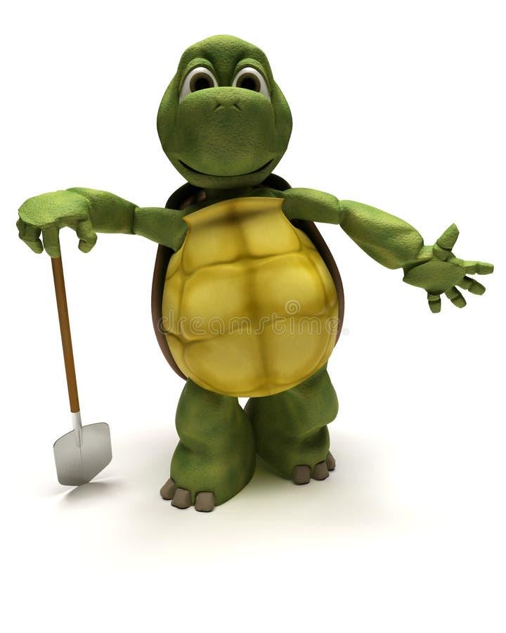 выкапывая черепаха лопаты бесплатная иллюстрация