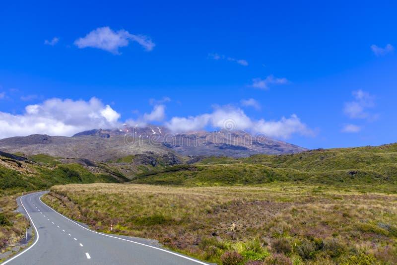Вымощенная дорога в лесе стоковая фотография rf