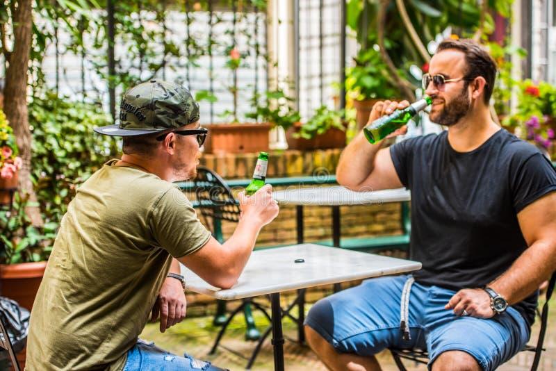 Выпивая пив в баре стоковое изображение rf