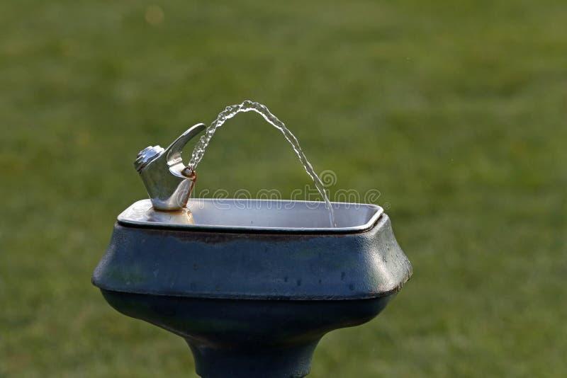 Выпивая фонтан воды из крана стоковые изображения