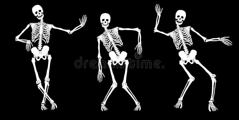 выпитые скелеты бесплатная иллюстрация