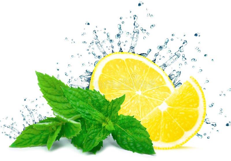 Выплеск воды лимона стоковые фотографии rf