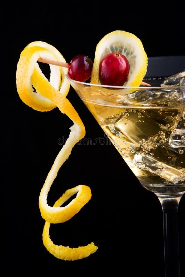выплеск лимона клюквы coc стоковая фотография