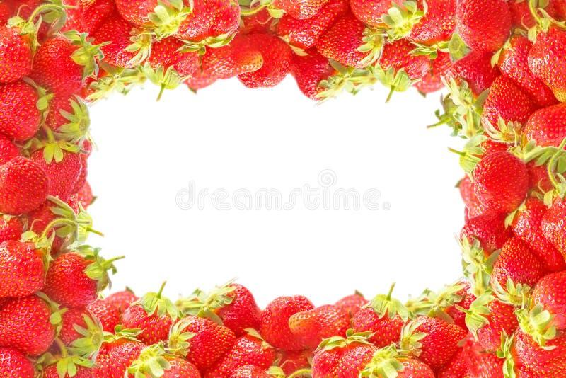 Выпушка или рамка с свежим красным летом приносить клубниками изолированными на белой предпосылке Естественные украшение или знам стоковые изображения rf