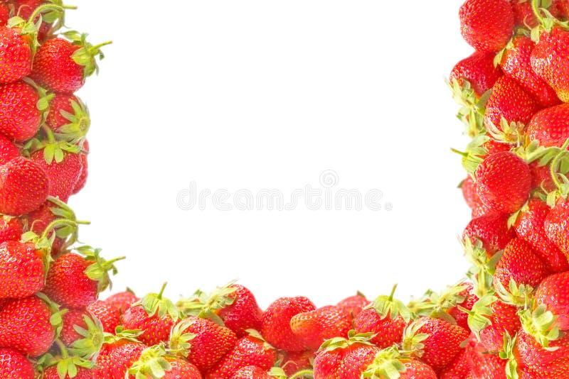 Выпушка или рамка с свежим красным летом приносить клубниками изолированными на белой предпосылке Естественное украшение для диза стоковая фотография rf